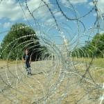 Refugees not welcome – (k)ein osteuropäisches Problem?